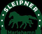 sleipner_logo